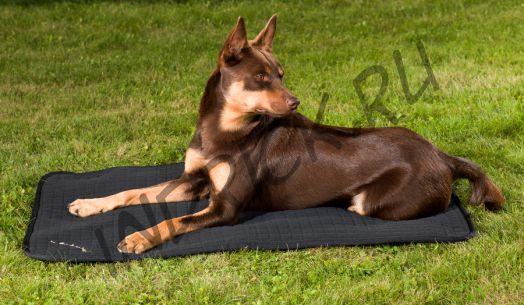 Матрасик Back on Track для собак
